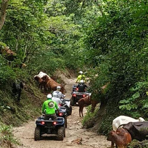 ATV Ride At Sierra Vallejo