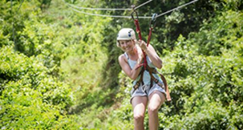 Spider Monkey Canopy Tour