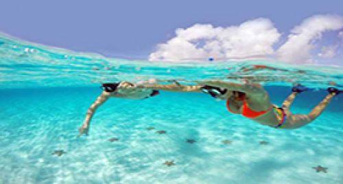Island Tour Cozumel
